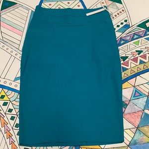 HAVE Brand Pencil Skirt